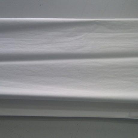 tissue__72871_zoom