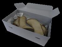 Type 5 Archive Box